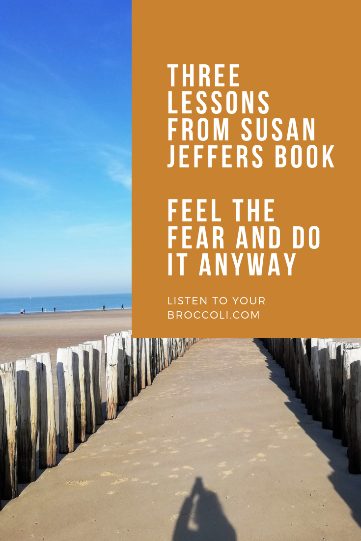 Feel-the-fear-book-by-susan-jeffers-blog-listen-to-your-broccoli-04